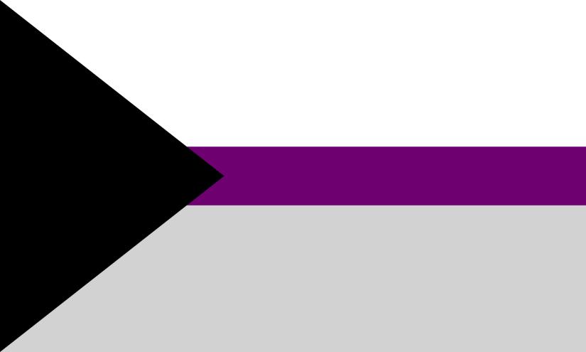 2000px-Demisexual_Flag.svg