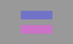 Androgyny Flag