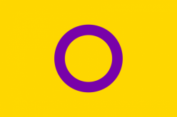 Intersex Flag that was founded in Australia, by Morgan Carpenter. It is now being accepted globally. I am the one who brought it to the United States back in 2015.