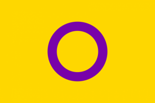 cropped-cropped-cropped-cropped-intersex_flag-svg1.png
