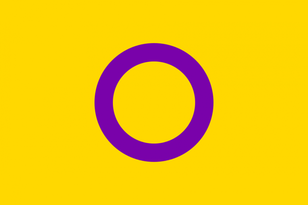cropped-cropped-cropped-intersex_flag-svg1.png