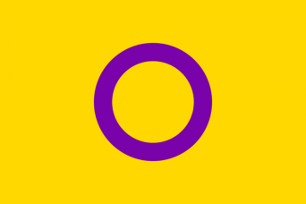 The Intersex Flag