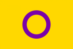 cropped-intersex_flag-svg.png
