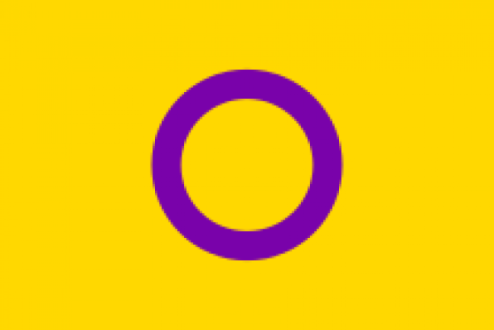 The Intersex Flag