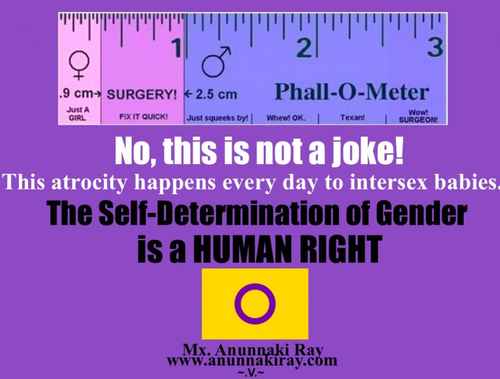 cropped-phallo-meter.jpg