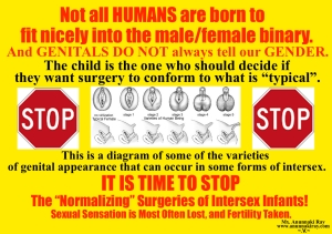 IT IS TIME TO STOP Normalzing Genital Surgery