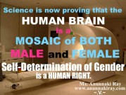 cropped-human-brain-is-a-mosaic.jpg
