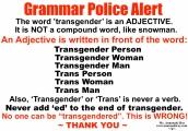 Grammar Police Alert