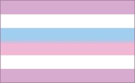 Bi-Gender Flag