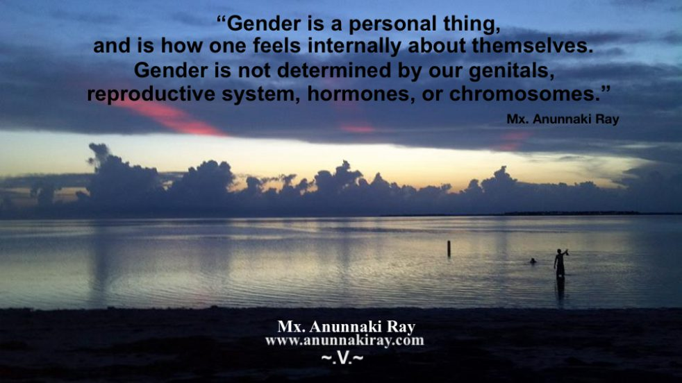 cropped-gender-is-a-personal-thing-not-in-our-genitals-reproductive-system-hormones-or-chromosomes.jpg