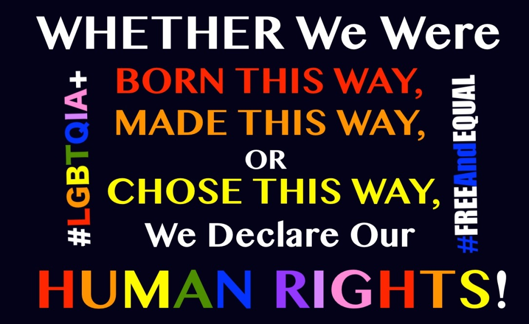 LGBTQIA+ Free And Equal Born This Way