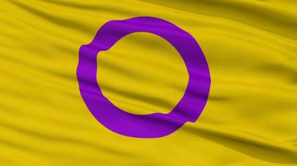 The Intersex Flag I promote here in the United States.