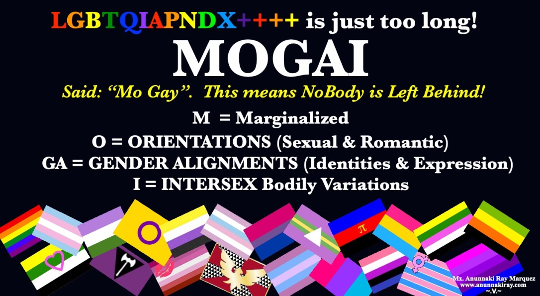 MOGAI Definition with FLAGS | Nobody Left Behind!
