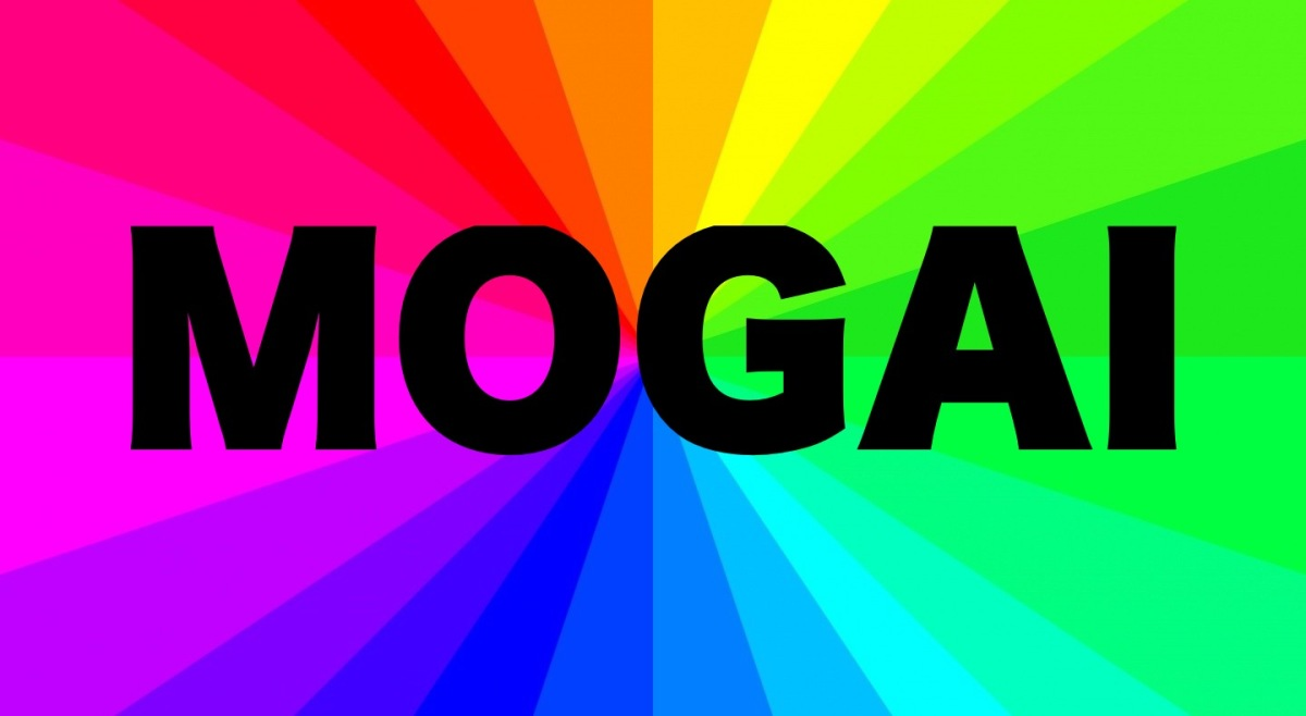 I will now use MOGAI  instead of LGBTQIA+
