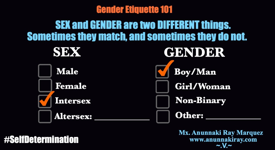 Gender Etiquette 101 Sex and Gender Boxes 2
