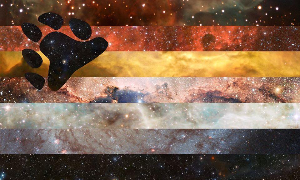 Bear PRIDE Flag | Pride Space Flags by Laurie Raye