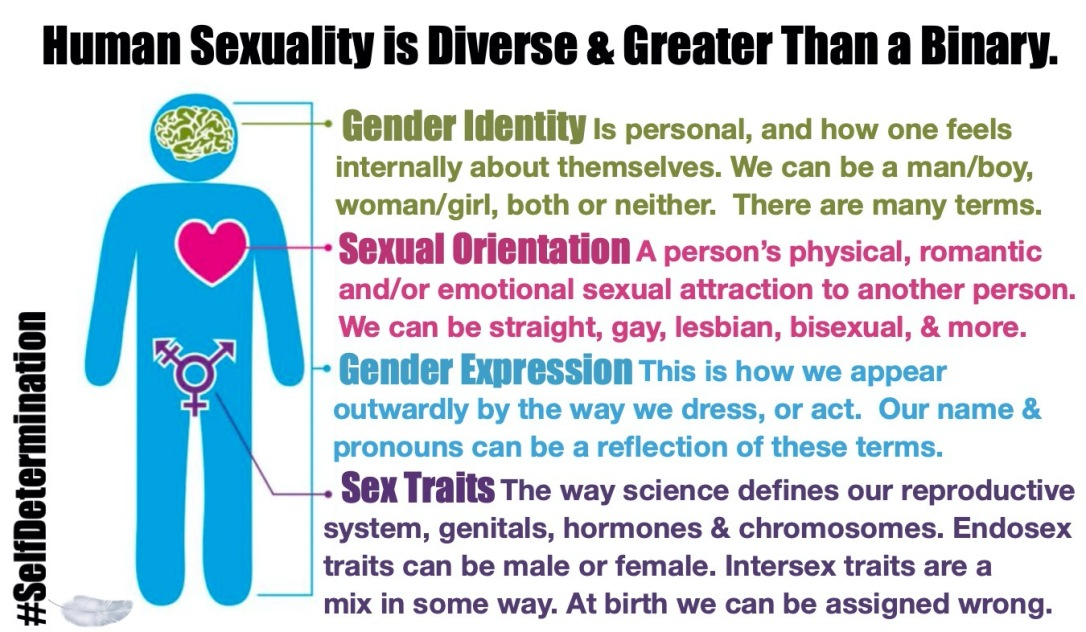 Human Sexuality is Diverse & Much Greater Than A Binary